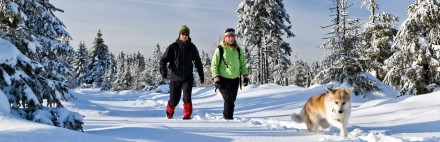 Winter-Wanderungen