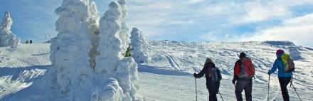 Winterwandern in Berchtesgaden-Königssee