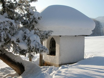 Winter am Aschauerweiher