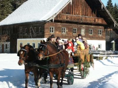 Pferdekutschfahrt im Salzburger Freilichtmuseum