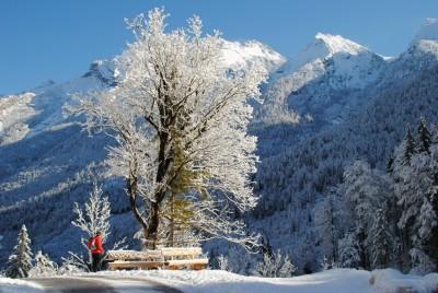 Beim Wandern in der Alpinregion Berchtesgaden