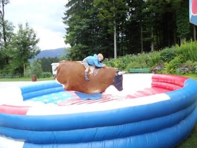 Action im Aschi 2017 Bullriding für Groß und Klein