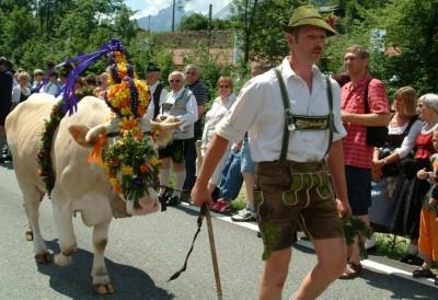 Almabtrieb in Bischofswiesen