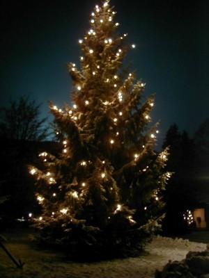 Traditioneller Christbaum zur Weihnachtszeit in den Bergen