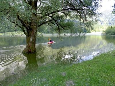 Geführte Wanderung rund um das Hallthurmer Moos in Bischofswiesen