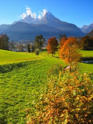 Feldrain am Natur-Erlebnisweg Bischofswiesen mit Blick auf den Watzmann