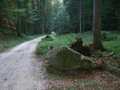 Gneis-Findling am Silberg, wie er ursprünglich gelegen hat