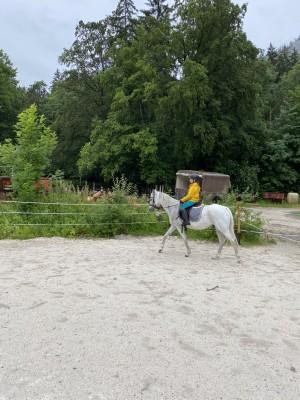 Reitstunden am Blasihof - Familienurlaub in Bischofswiesen im Berchtesgadener Land