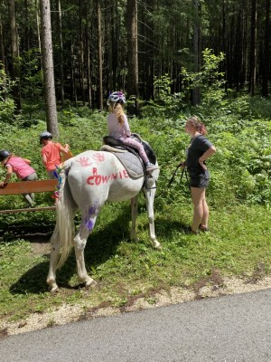 Crowny, eines unserer Pferde am Blasihof Familienurlaub in Bischofswiesen im Berchtesgadener Land