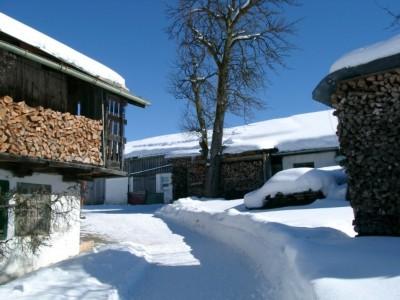 Traumhafte Winterwanderwege