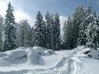 Winterlandschaft Franz