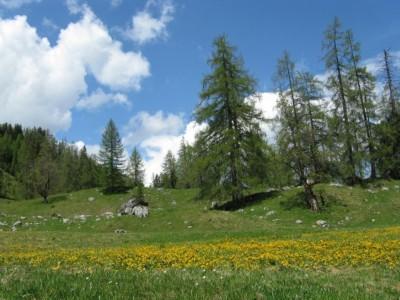 Sommer im Berchtesgadener Land